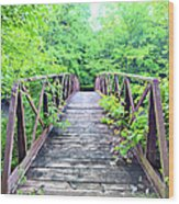 Mallory Bridge Wood Print