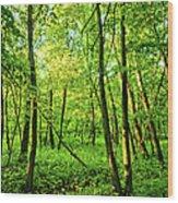 Mallory Woods Wood Print