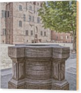 Malmohus Castle Courtyard Wood Print