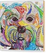 Maltese Puppy Wood Print by Eloise Schneider