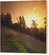 Malvern Hill Wood Print