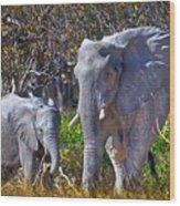Mama And Baby Elephant Wood Print