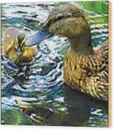 Mama And Chick Wood Print