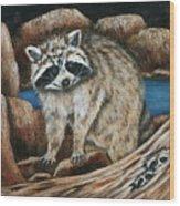 Mama Racoon Wood Print