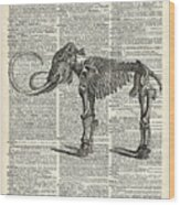 Mammoth Elephant Bones Over A Antique Dictionary Book Page Wood Print