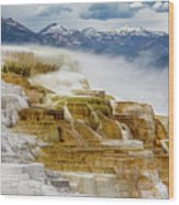 Mammoth Hot Springs In Yellowstone National Park, Wyoming. Wood Print