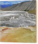 Mammoth Hot Springs1 Wood Print
