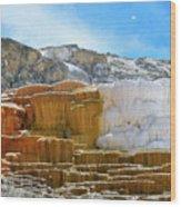Mammoth Hot Springs4 Wood Print