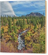 Mammoth Lakes Autumn Falls Wood Print