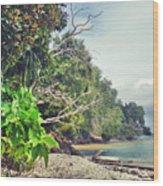 Mamutik Island Wood Print