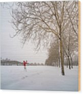 Man In Red Taking Picture Of Snowy Field And Trees Wood Print