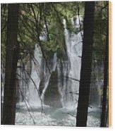 Man Of The Falls Wood Print