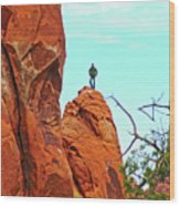 Man On A Rock By Pine Tree Arch Along Devil's Garden Trail In Arches  National Park, Utah Wood Print