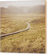 Man On Expedition Along Cradle Mountain Boardwalk Wood Print