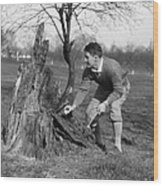 Man Retrieving Golf Ball From Tree Wood Print