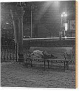 Man Sleeping On Bench Wood Print