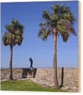 Man With A Hat On The Wall With Palm Trees In Saint Augustine Fl Wood Print