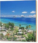 Mana Island Wood Print