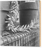 Manago Succulent Wood Print