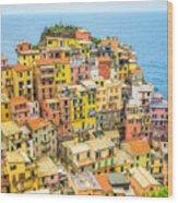 Manarola Cinque Terra City Wood Print