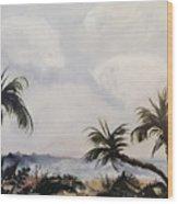 Manatee Skies Wood Print