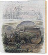 Manatees, Vulnerble Species Wood Print