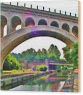 Manayunk Canal Wood Print