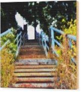 Manayunk Steps Wood Print