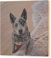 Mancha At The Beach Wood Print