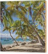 Manchioneel Bay, Cooper Island Wood Print