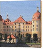 Mancion - Id 16217-202733-1393 Wood Print