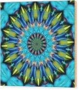 Mandala 111511 A Wood Print