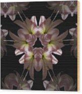 Mandala Amarylis Wood Print