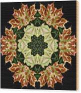 Mandala Autumn Star Wood Print