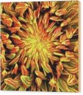 Mandala Flower  Wood Print