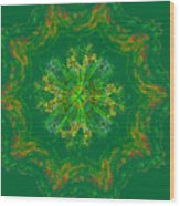 Mandala Journey Wood Print