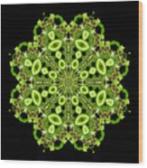 mandala - Revival-2201- 02gb Wood Print