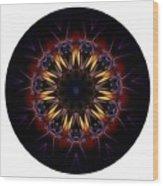 Mandala - Talisman 1389 Wood Print