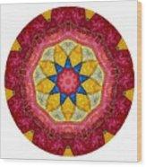 Mandala - Talisman 1404 Wood Print