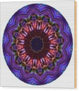 Mandala - Talisman 1405 Wood Print