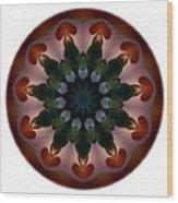 Mandala - Talisman 1440 Wood Print