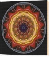 Mandala - Talisman 1452 Wood Print