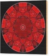 Mandala - Talisman 1542 Wood Print