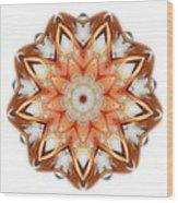 Mandala - Talisman 1620 Wood Print