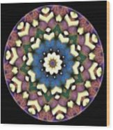 Mandala - Talisman 1684 Wood Print
