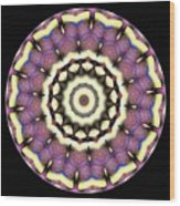 Mandala - Talisman 1690 Wood Print