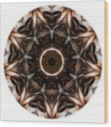 Mandala - Talisman 3705 Wood Print