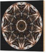 Mandala - Talisman 3706 Wood Print