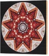 Mandala - Talisman 4009 Wood Print
