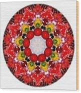 Mandala - Talisman 4010 Wood Print